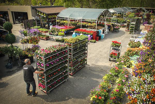 Down 2 Earth Garden Centre Toronto